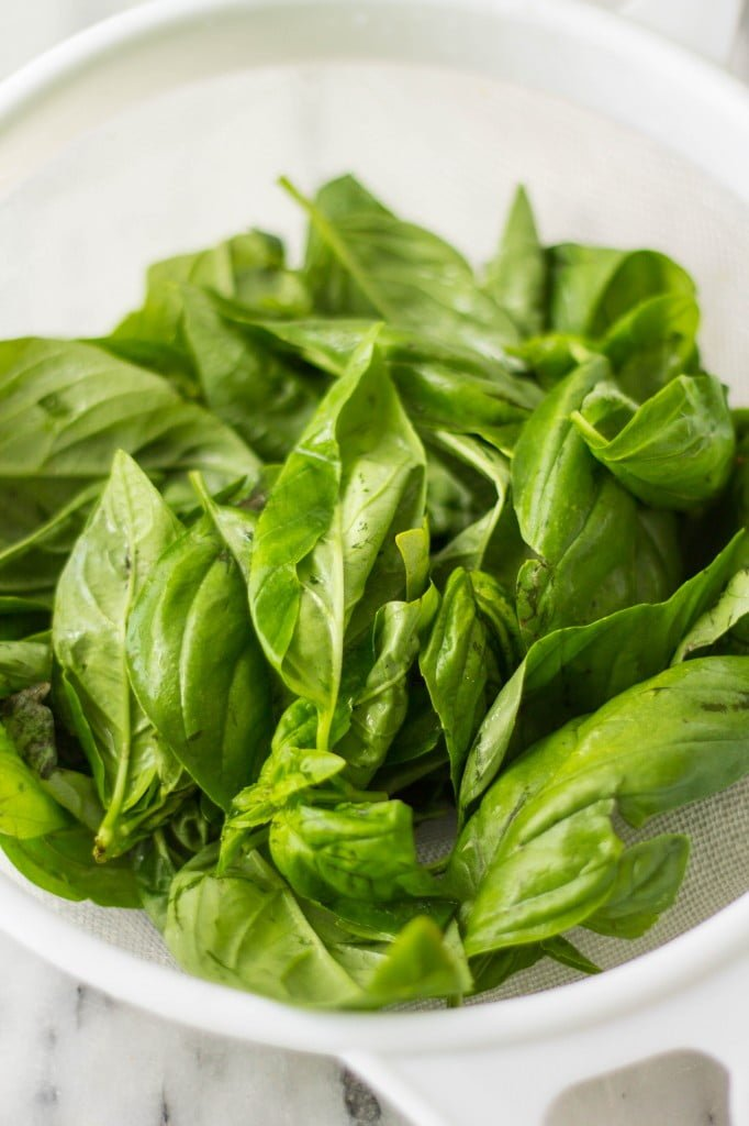 Homemade Basil Pesto | www.oliviascuisine.com