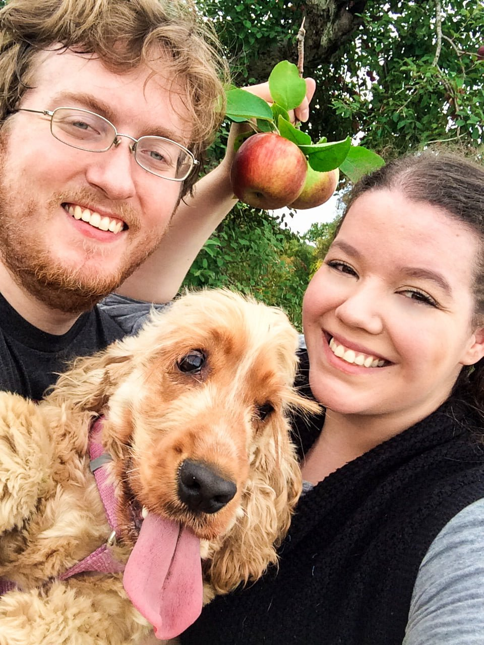 Apple Picking at Outhouse Orchards
