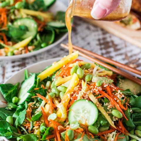Asian Salad with Sesame Ginger Vinaigrette