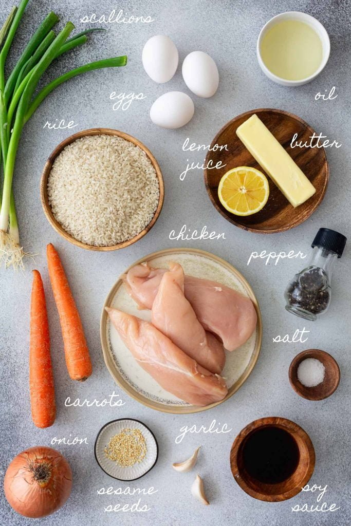 Ingredients for chicken fried rice recipe.